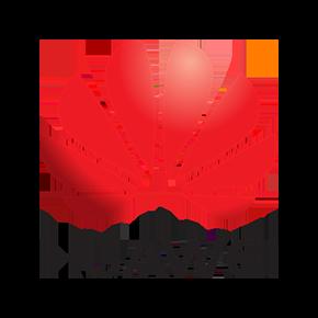 huawei290